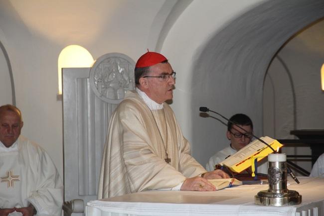 Kardinal Bozanić predvodio Misu za Domovinu na grobu sv. Petra u Rimu