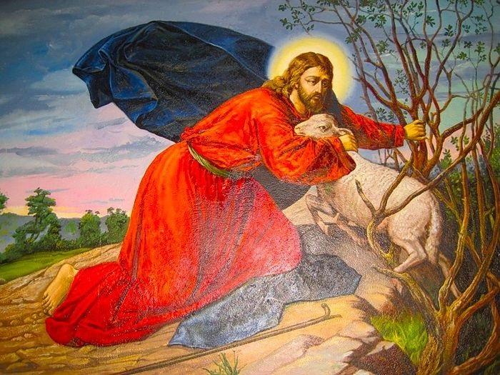 Crkva mora naviještati Boga koji traži svaku izgubljenu ovcu